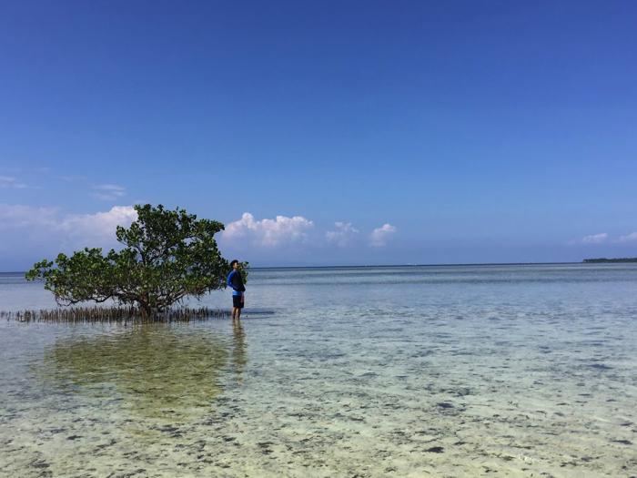 バージン島はフィリピンのウユニ塩湖と言われているらしい