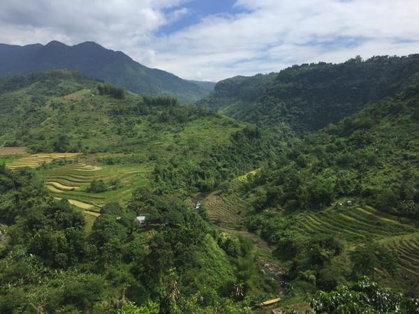 フィリピンのネグロス島で棚田が見れるところを紹介
